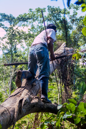 tour guide: MADIDI, BOLIVIA - MAY 8, 2105: Native tour guide hunting in a jungle of Madidi National Park, Bolivia Stock Photo