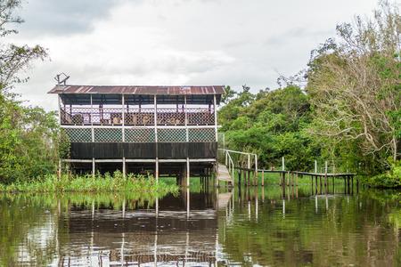 animal watching: Riverside tourist lodge on river Yacumo, used for Pampa animal watching tours, Bolivia.