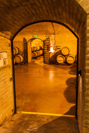 ferment: CHACRAS DE CORIA, ARGENTINA - AUG 1, 2015: Wine cellar of winery Altavista in Chacras de Coria village, near Mendoza, Argentina