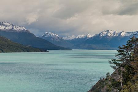 calafate: Lago Argentino in Patagonia, Argentina