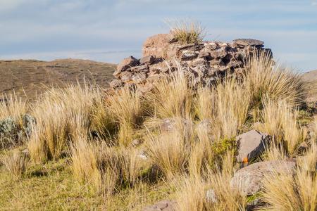Ruin of a funerary tower in Sillustani, Peru Stock Photo