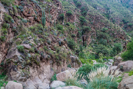 rock formation: Quebrada del Colorado canyon near Cafayate, Argentina Stock Photo