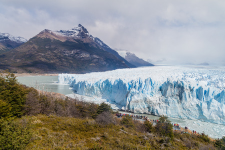 calafate: Perito Moreno glacier in National Park Glaciares, Argentina