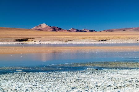 avaroa: Coast of Laguna Collpa lake in Reserva Nacional de Fauna Andina Eduardo Avaroa protected area, Bolivia
