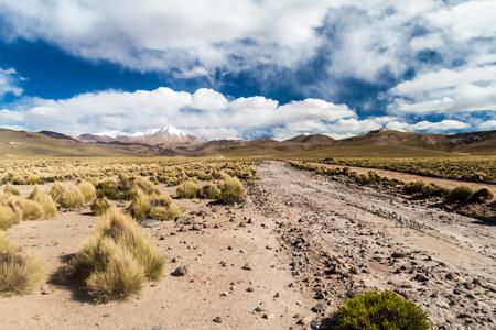 avaroa: Road through altiplano in Bolivia