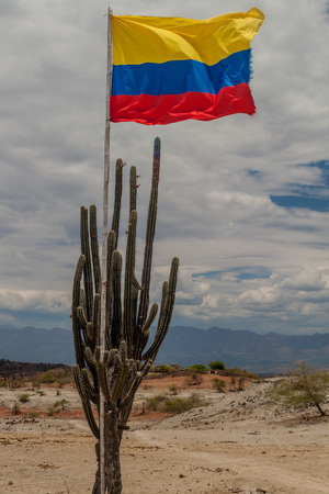 Cactus with Colombian flag in Tatacoa desert, Colombia