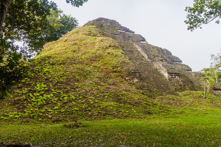 Pyramid at the archaeological site Tikal, Guatemala