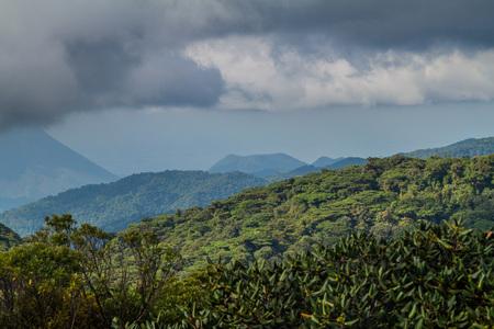 Cloud forest covering Reserva Biologica Bosque Nuboso Monteverde, Costa Rica.