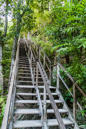 Stairs leading to Temple IV at the archaelogical site Tikal, Guatemala Stock Photo