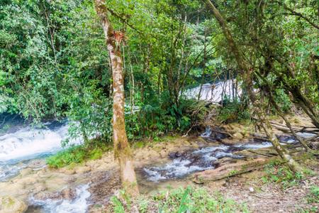 lost lake: River near Laguna Brava (Yolnabaj) lake, Guatemala