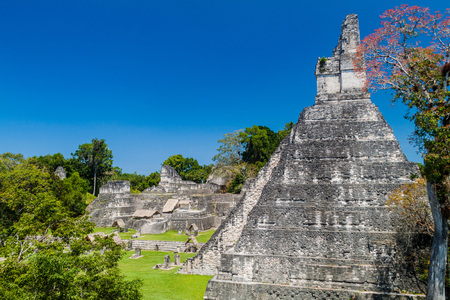 Temple I at the archaeological site Tikal, Guatemala Stock Photo