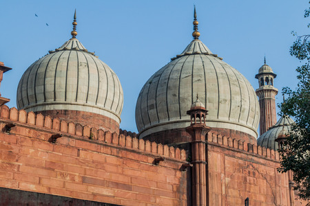 Cupolas of Jama Masjid mosque in Delhi, India