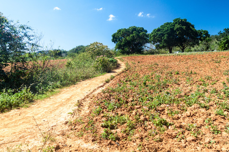 Muddy road near Valle de Ancon village, Cuba 版權商用圖片