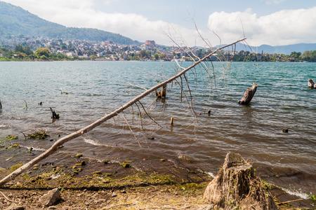 Coast of Atitlan lake, Guatemala. Rising levels of this lake causing submersion of trees. Santiago Atitlan village visible.