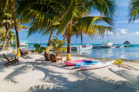 Palms and beach at Caye Caulker island, Belize
