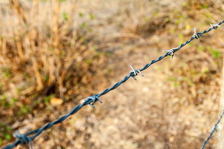 Detail of a barbed wire