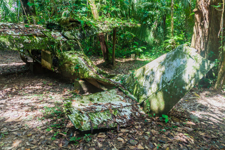 Plane wreck in Cockscomb Basin Wildlife Sanctuary, Belize. This plane crashed with Dr. Alan Rabinowitz, biologist studying jaguars. Stok Fotoğraf