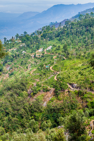 Tea plantations in mountains near Haputale, Sri Lanka Stock Photo