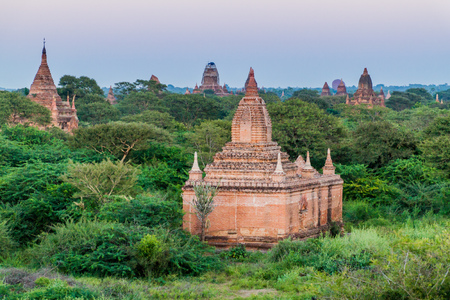 Skyline of Bagan temples, Myanmar 免版税图像
