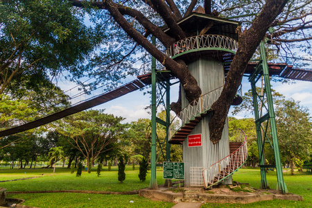Tree tower and suspension bridges in People's Park in yangon, Myanmar 스톡 콘텐츠
