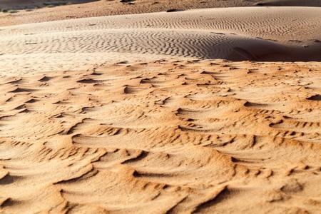 Dunes of Wahiba Sands (Sharqiya Sands), Oman
