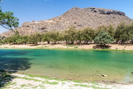 Small lake at Wadi Dharbat near Salalah, Oman. Stock Photo