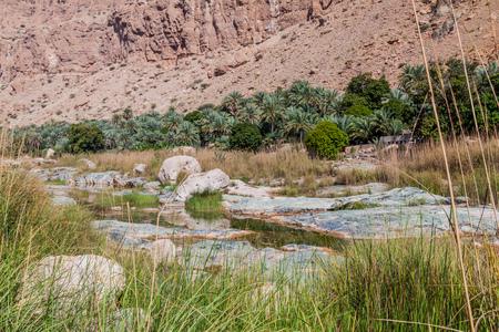 Creek in Wadi Tiwi valley, Oman