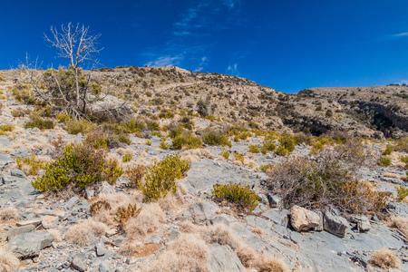 Landscape of Hajar Mountains, Oman