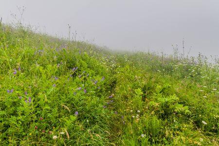 Landscape of Dilijan National Park in Armenia