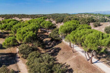 Casa de Campo park in Madrid, Spain