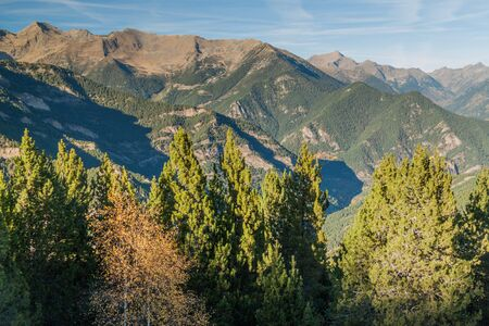 Forest and mountains in Andorra