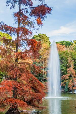 Cascada in Retiro park in Madrid, Spain Banco de Imagens