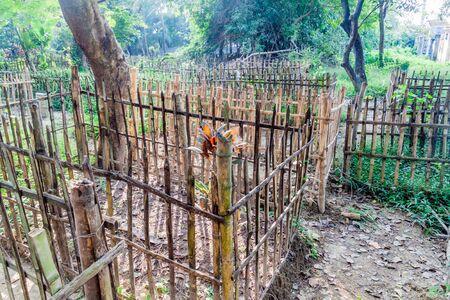 View of a cememetery in Rajshahi, Bangladesh Фото со стока