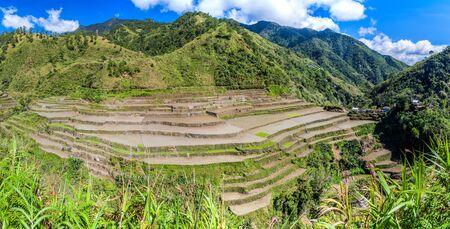 Rice terraces near Cambulo village, Ifugao province, Philippines