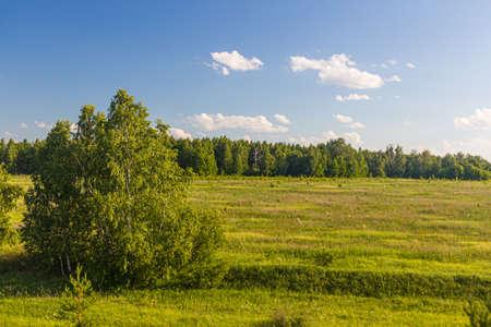 Landscape of Russia in Volgograd Oblast region Standard-Bild