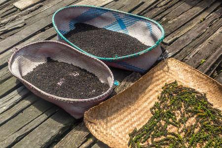 Drying black pepper on a veranda of a traditional longhouse near Batang Rejang river, Sarawak, Malaysia Stock Photo