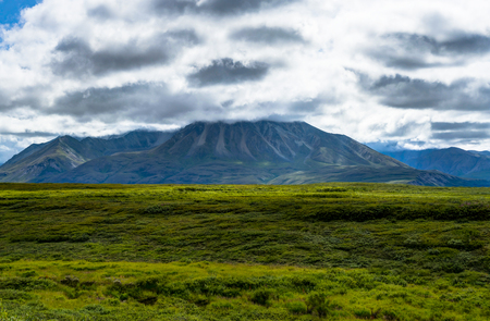 View towards mountains and clouds in Denali National Park in Ala Stock Photo