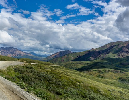 View towards sky with clouds and nature in Denali National Park