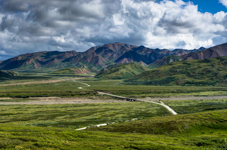Path leading into the mountains with sky and cloud in Denali Nat