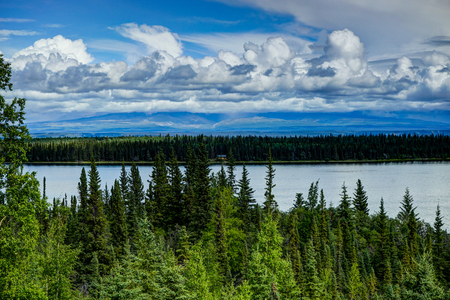 View towards empty cabin in the forest in Alaska United States o
