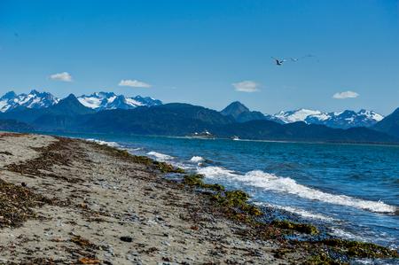 Beachview with mountains and sea Homer spit, Kenai Peninsula Ala