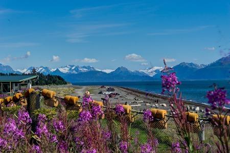 Nature view with Blue Sky Homer spit, Kenai Peninsula Alaska