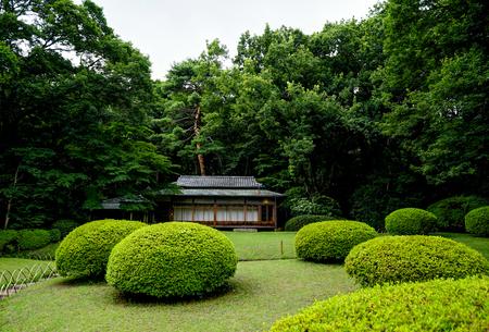 Meiji Shrine Yoyogi Park Tokyo Japan Asia