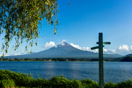 View to Mount Fuji with Flowers in Summer with blue sky and clou Stock Photo
