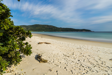 Long Exposure Lopes Mendes Beach in Ilha Grande south of Rio de