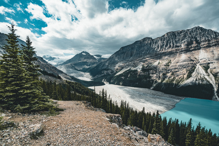 View over Peyto Lake, Banff National Park Canada