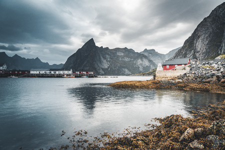 Famous tourist attraction of Reine in Lofoten, Norway with red rorbu houses, clouds, rainy day with bridge and grass and flowers. Stockfoto