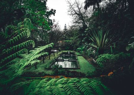 The Terra Nostra Garden Park on Sao Miguel island, Furnas, Azores. It is located in the midst of this magnificent water system. Imagens - 127424761
