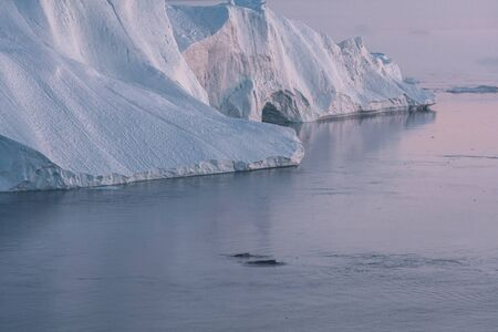 3 Humpback Whale dive near Ilulissat among icebergs during pink midnight sun. Sunrise and Sunset. Their source is by the Jakobshavn glacier. The source of icebergs is a global warming and catastrophic thawing of ice, Disko Bay, Greenland