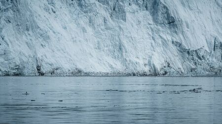 Close Up shot of huge Glacier wall with many birds in front. Large chunks of ice breaking off. Moody and overcast weather. Eqip Sermia Glacier called Eqi Glacier. Greenlandic ice cap melting because of global warming.